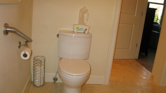 toilet-640x360