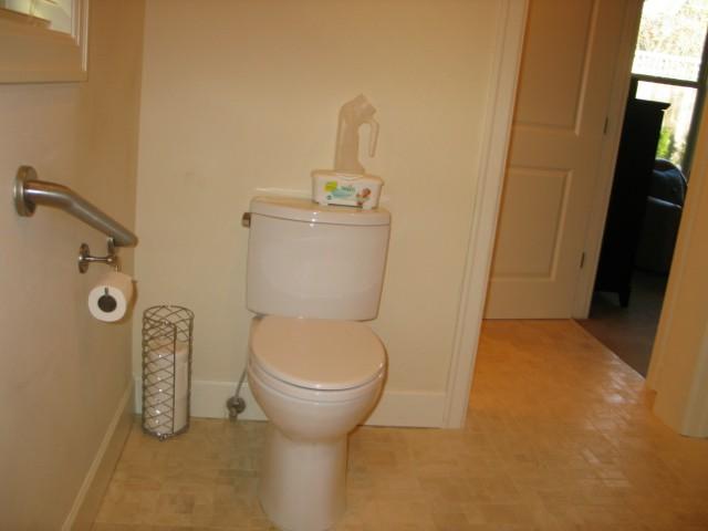toiletandgrabrail
